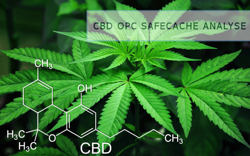 CBD OPC Legal gesund